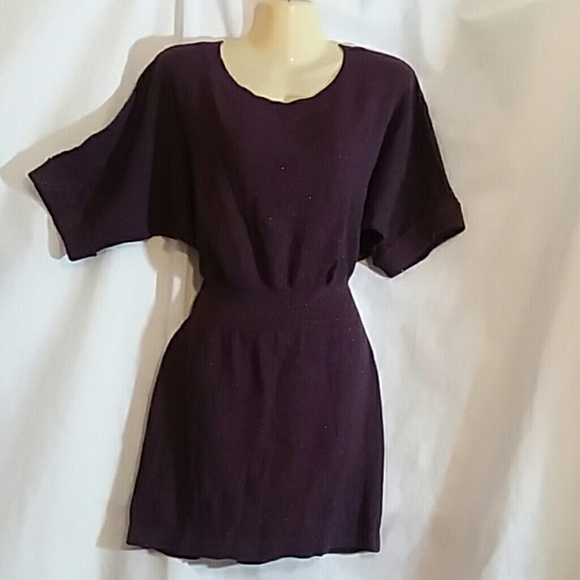 Express Dresses & Skirts - Express Purple Sparkly Knit Dress